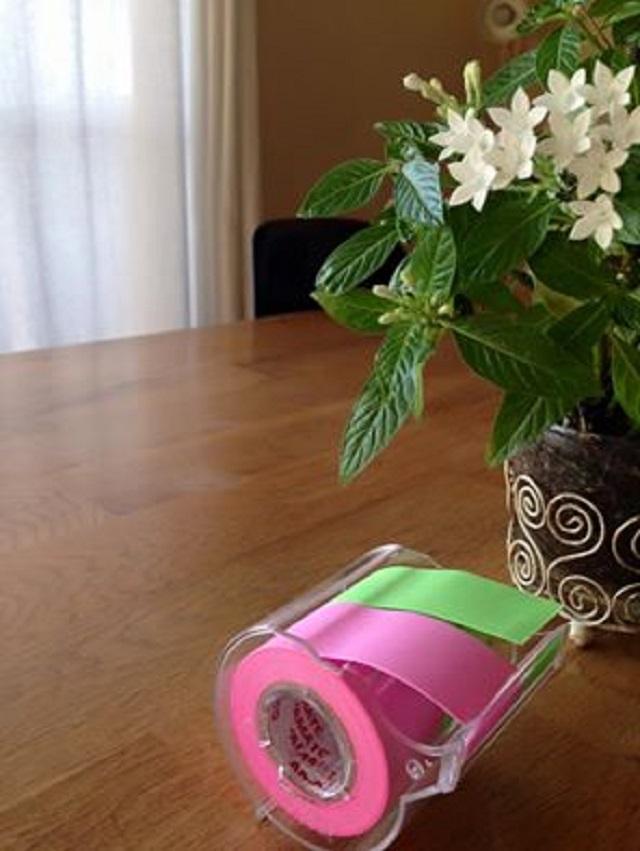 幅広&蛍光色 マスキングテープが急な引越しの「仕分け」に大活躍!