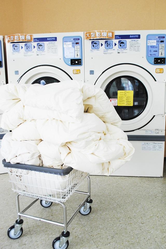 布団 コインランドリー 羽毛 羽毛布団をコインランドリーで洗う手順、コツ、注意点