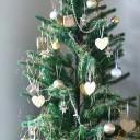 家にツリーは飾る派ですか? いちばん楽な楽しみ方とは?