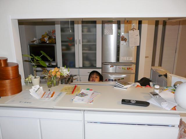 キッチンカウンターとダイニングテーブルがゴチャゴチャ!救世主はカウンター下収納でした